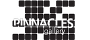 Pinnacles Gallery logo