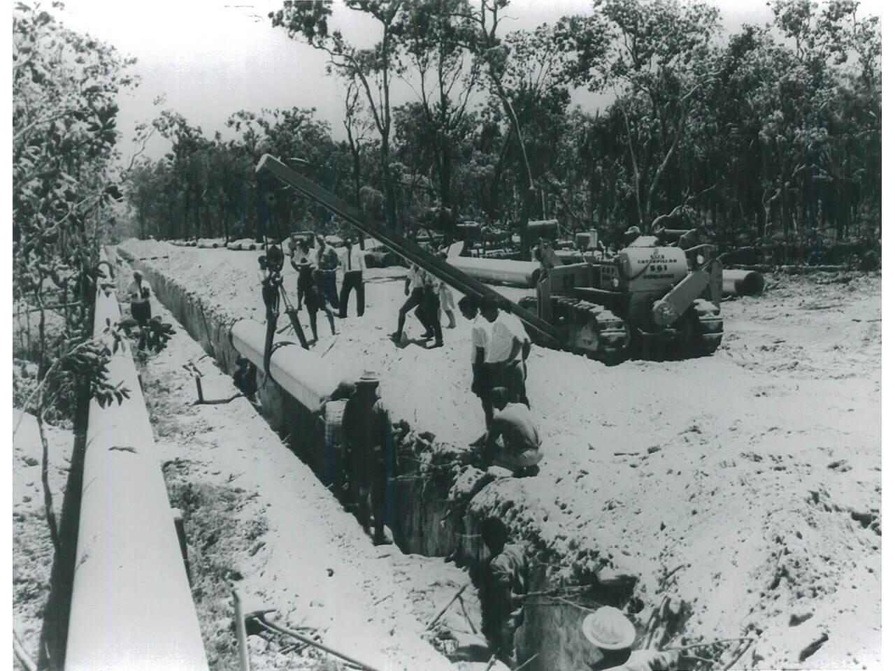 Paluma Dam - Clearing for Mt Spec pipeline (1958)