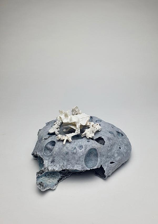 Mahala-Hill <i>Armoured Mist Frog </i>-2020